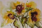 Sonnenblumen2.jpg